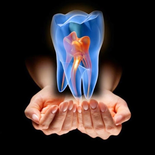 root canal therapy molar